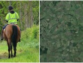 Rider thrown to the ground after horse spooked by car near Ranby