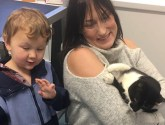 Cat missing for five months reunited with family in time for Christmas