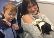 Snuggles has now been reunited with her owners. Photo: South Lincs Vets Group