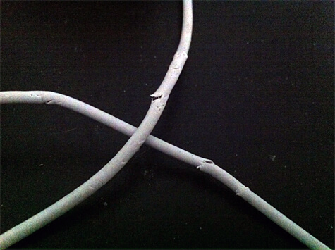 iPhone cords eaten up by our cat.