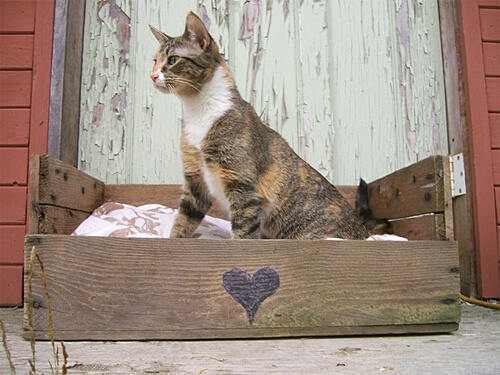 Pet bed made out of a wood pallet!