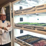 NAIT's Hong Chew stands by the Urban Cultivator, which allows students to grow & harvest microgreens on campus.