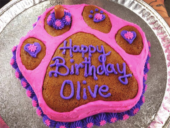 Fantastic dog cake made out of liver, mashed potatoes and cream cheese.