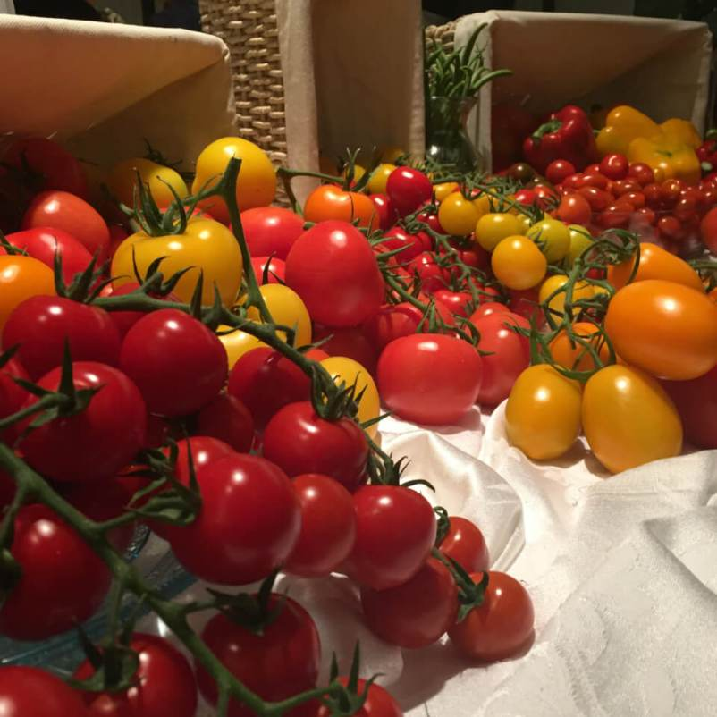 Tomatoes from Gull Valley Greenhouses