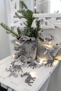 Lyslenke grå rein miljøbilde
