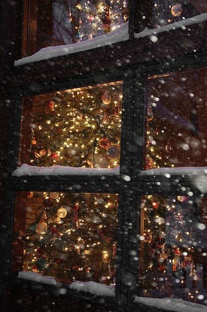 juletre se inn vinduet