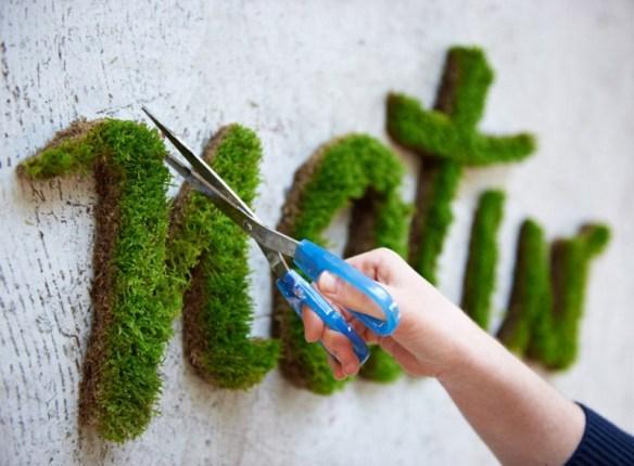 mose grafitti natur