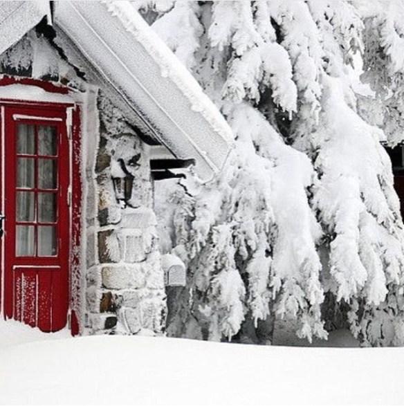 Hvit jul