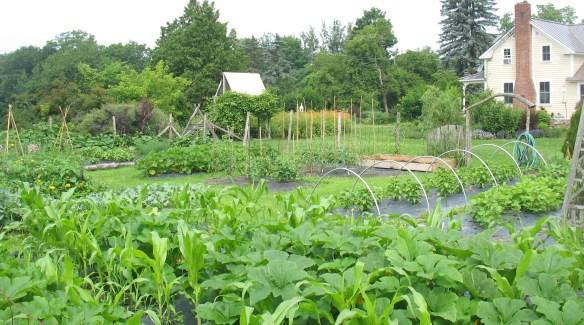Vermont vegetable garden design