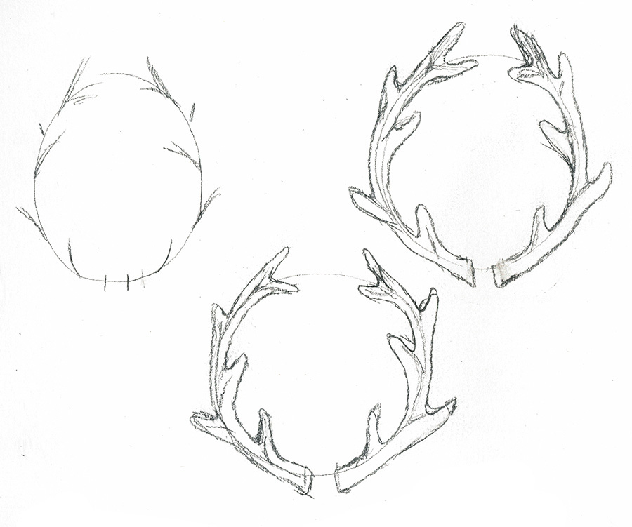 How to Draw Antler Laurels in 4 Easy Steps - LindsayBraman