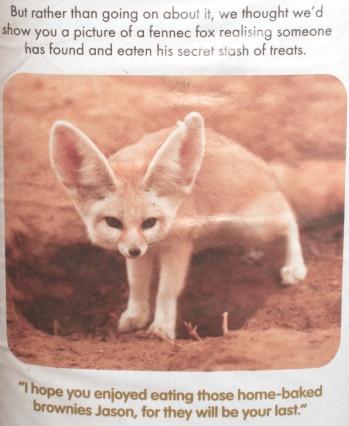 innocent-fox