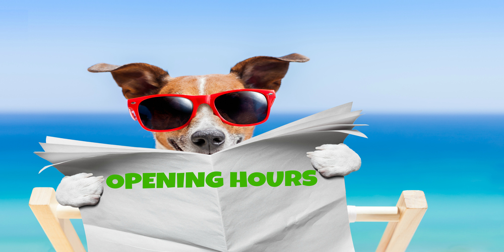 Opening Hours Link Credit Union
