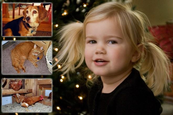 Christmas Card 2012 small