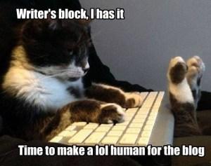 writers_block_lolcat
