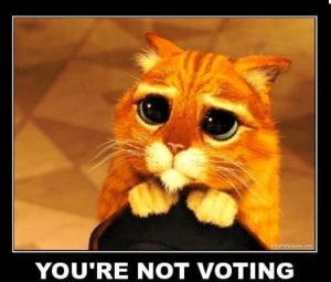 not_voting