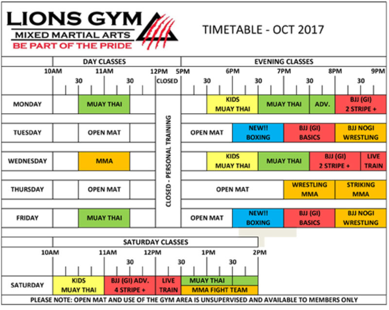 Timetable Martial Arts Academy in Coventry Lions Gym MMA Coventry - class timetable