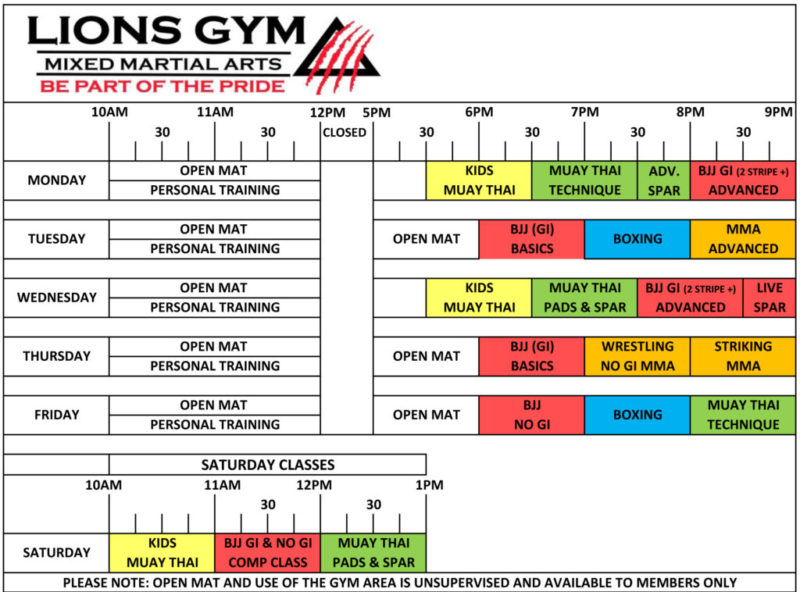 Timetable Martial Arts Academy in Coventry Lions Gym MMA Coventry