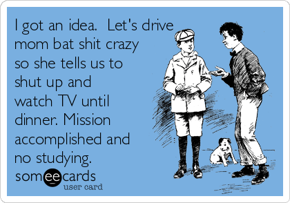 i-got-an-idea-lets-drive-mom-bat-shit-crazy-so-she-tells-us-to-shut-up-and-watch-tv-until-dinner-mission-accomplished-and-no-studying-e4fb1