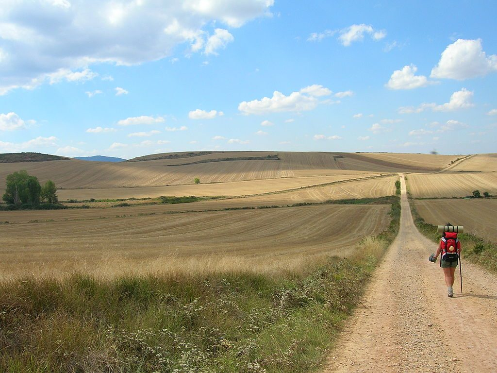 Camino Francés Santiago Why Walk The Camino De Santiago Then And Now Lisa Deam