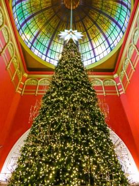 Holiday Tree Queen Victoria Building