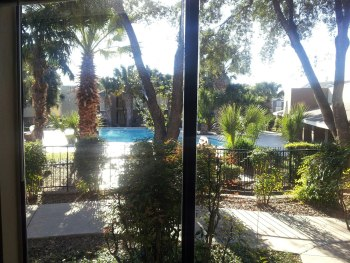 Avion Place Pool View, palm trees