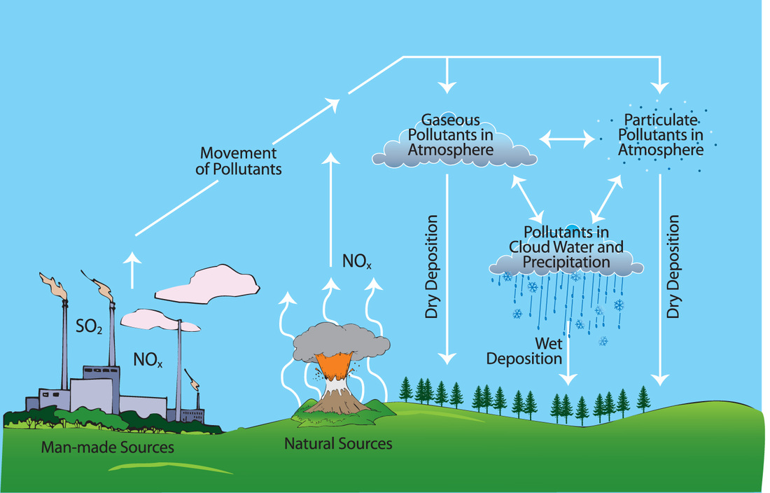Effects and Solutions of Acid Rain - Pollutants