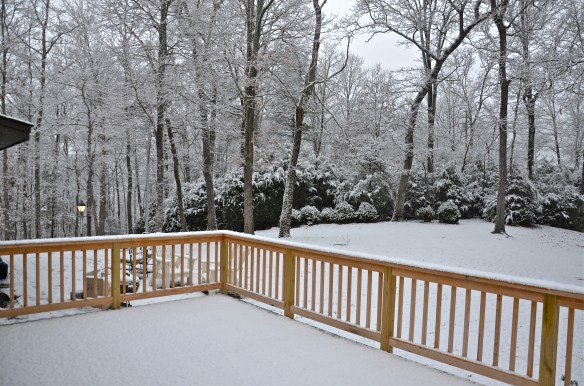 Back deck and Snow