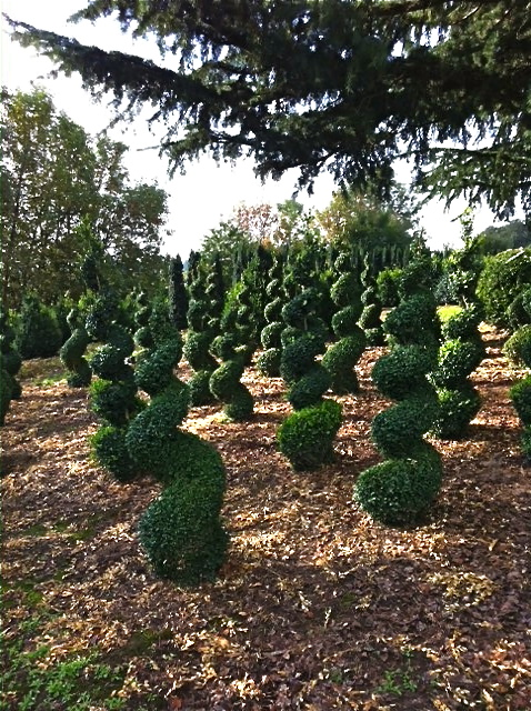Spirals and globes—Alice is definitely in Wonderland in this garden