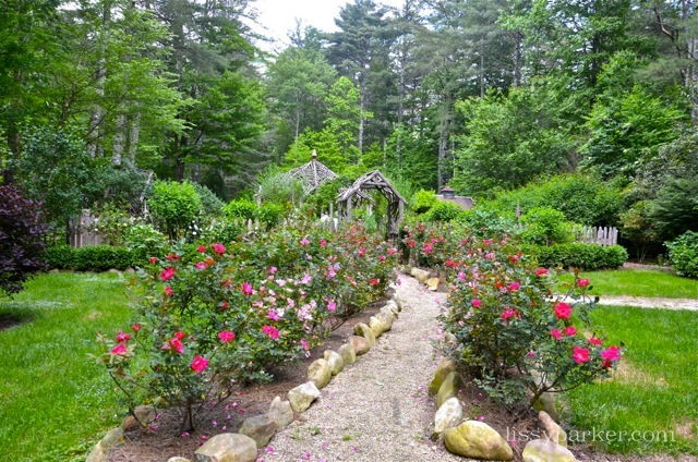 Large stones and more roses lead the way to the Rustic enclosed garden