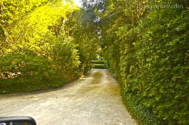 More mystery is created with the hedge and curving entry