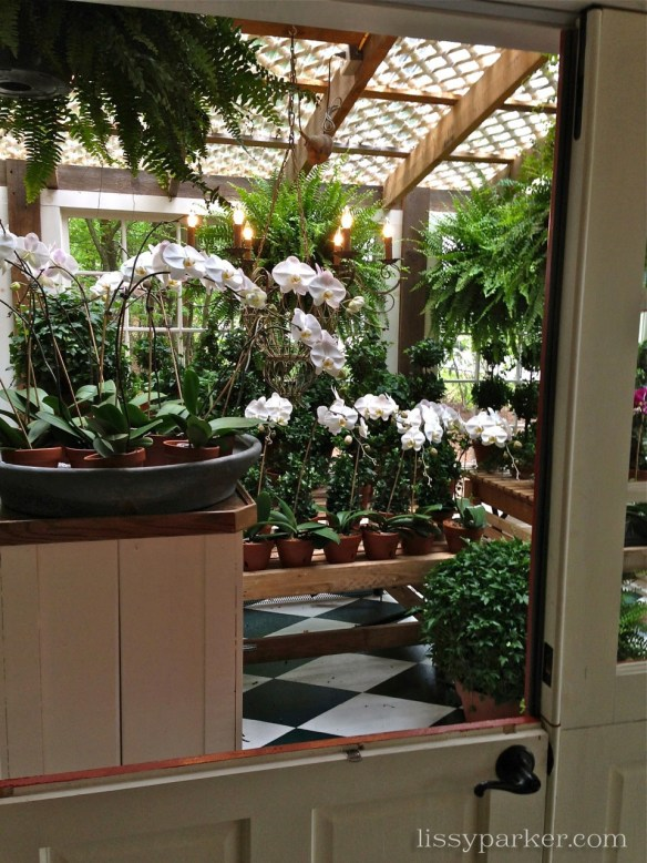 Greenhouse is loaded will orchids and topiary