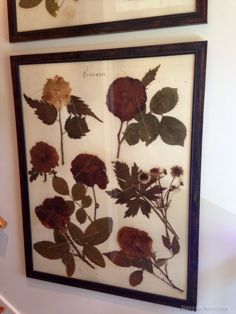 Framed pressed flowers by    line the back staircase at the end of our tour
