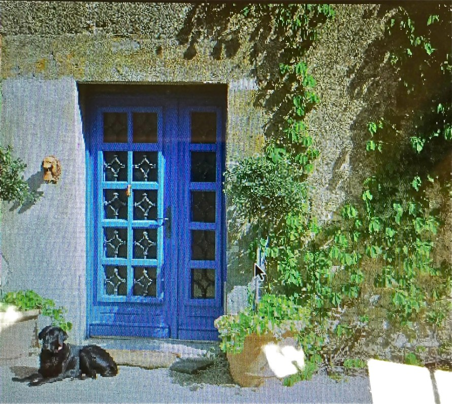 Resting after a long full day of fun—love those blue doors