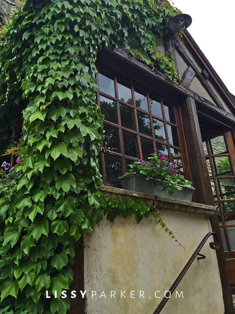 Warm friendly France entering a vine covered door