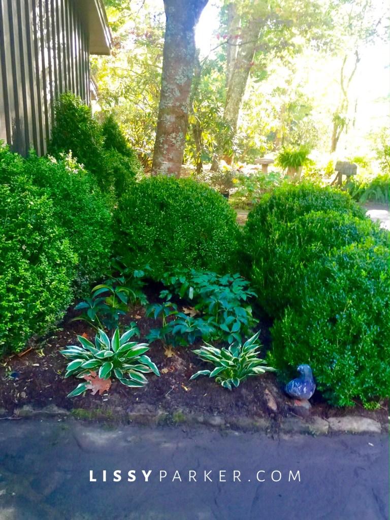 entry garden-shade