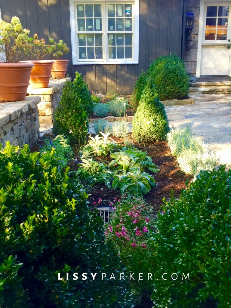 entry garden boxwoods and ferns