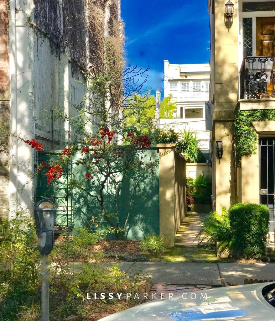 Historic Savannah Charleston