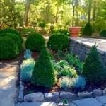 The New Secret Garden—Entry Update