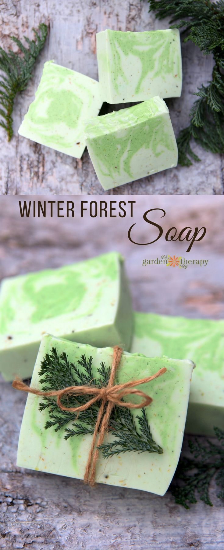 Diy Soap Essential Oils Best Beauty Diy This Winter Forest Soap Recipe Is Scented With