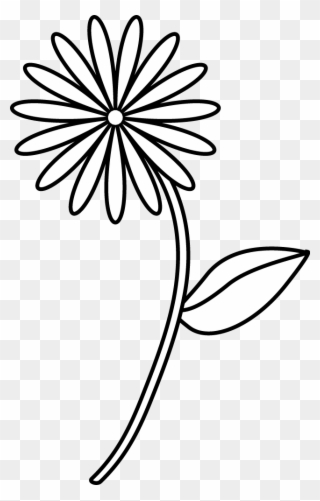 Cartoon Flower - Drawing Flower With Names Clipart (#1553626