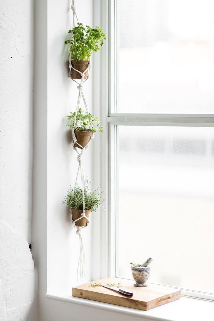 Idees Deco Jardin Suspendu