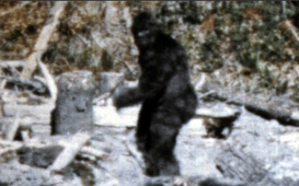 Bigfoot-1