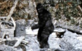 Bigfoot-1