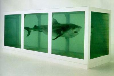 Hirst Shark