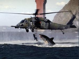 Shark Attack 01-1