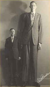 Wadlow