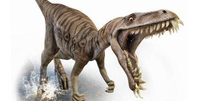 masiakasaurus-800