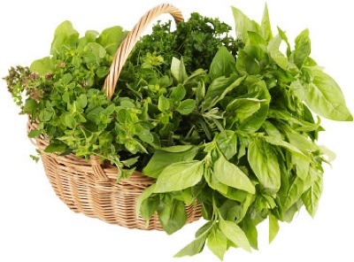 Freshherbs