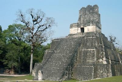 La Gu Tikal 02 461
