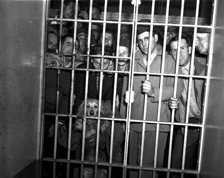 Top 10 Modern Prison Programs Listverse